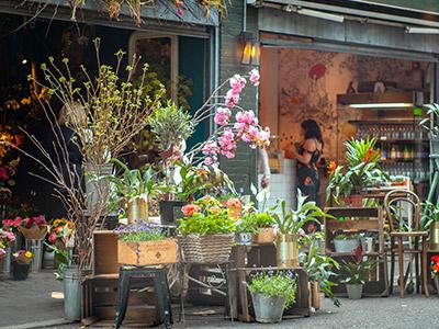 Vente commerce fleurs, fleuriste